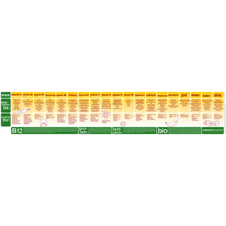 Vegan Nutrition Chart (German)