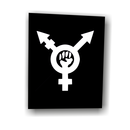trans*revolution - Patch