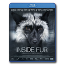 Inside Fur - Blu-Ray