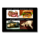 What meat-eaters see - Sticker (10x)